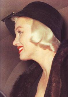 Profile perfection    [1955]