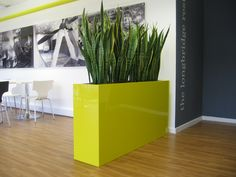Plants used as a screen for the entrance of this office canteen