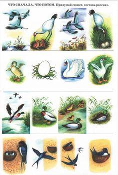 Montessori Kindergarten, Preschool, Paper Bag Crafts, Montessori Materials, Kids Zone, Pet Birds, Education, Natural, Prints