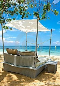 This pretty much looks like Heaven to me!!  I wouldn't MOVE from this spot all day!