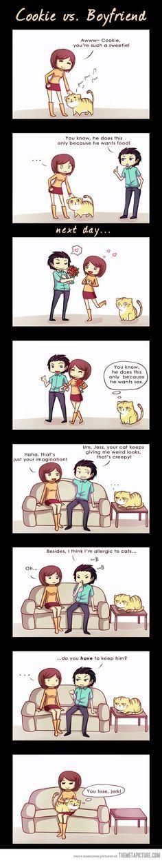 Cat vs. Boyfriend