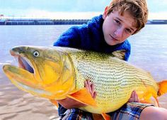 IGFA Catches: All-Tackle, Line-Class and Junior Record Fish from June 2013 | Field & Stream