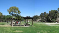 Griffith may get all of the attention, but Kenneth Hahn is impressive in both size and topography for a park in the middle of the Westside.
