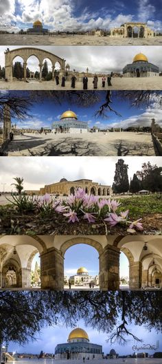 Al-Aqsa mosque , Jerusalem , Palestine