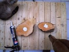 Picture of Harvesting the Burl