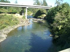 Ash Main Logging Bridge Hwy 4 Sproat_river