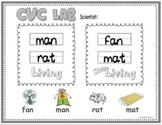 """*FREE*  Sort living  non-living objects; Science and Phonics combined! (Note: Free version has Short """"A"""" only.)"""