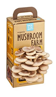 Back to the Roots Organic Mushroom Farm Back to the Roots http://www.amazon.com/dp/B00CD0KZ78/ref=cm_sw_r_pi_dp_UDrRwb1VBED76