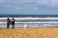 Surfers at Umina Beach