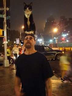 Man with Cat on Head