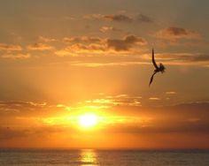 Sanabel sunrise
