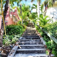 Maybe.......99 Steps to BlackBeard's Castle while in St Thomas