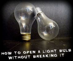 In this instructable I am going to show you how to open a standard incandescent light bulb that can be used for many awesome projects.It all started when I was lo. Recycled Light Bulbs, Light Bulb Crafts, Light Bulb Vase, Incandescent Light Bulb, Light Bulb Terrarium, Fun Craft, Craft Ideas, Decor Ideas, Old Lights