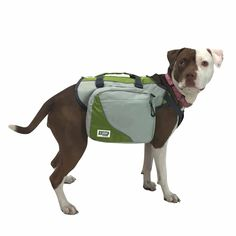 Explorer by FrontPet Dog Backpack/Backpacks for Dogs/Dog Backpack Harness/Dog Harness Backpack with Removable Saddle Bags: Amazon.ca: Pet Supplies