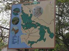 Phansad Wildlife Sacntuary Nature Trail >>>#Wildlife #Maharashtra