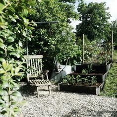 Lazy gardening. Work a little, rest a lot. #garden#hage #kitchengarden #kjøkkenhage #raisedbeds #pallekarmer