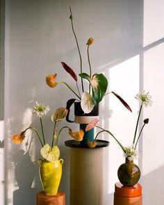 42 Ideas For Flowers Arrangements Vase Ikebana Ikebana, Plants Are Friends, Plant Decor, Pretty Flowers, Flower Vases, Indoor Plants, House Plants, Planting Flowers, Floral Arrangements