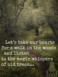 Let's take our hearts for a walk in the woods and listen to the magic whispers of old trees. Image via Wild Woman Sisterhood fb Great Quotes, Quotes To Live By, Me Quotes, Motivational Quotes, Inspirational Quotes, Beauty Quotes, Super Quotes, Quotes On Trees, In The Woods Quotes