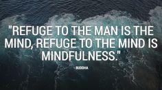 """Refuge to the man is the mind, refuge to the mind is mindfulness"" - Buddha #meditation #satorio #mindfulness"