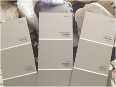 Plascon Greige Paint Colour Sample, Photo by Anne Roselt