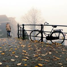 Amsterdam - snapmole - we simply track photos that people share from their vacation