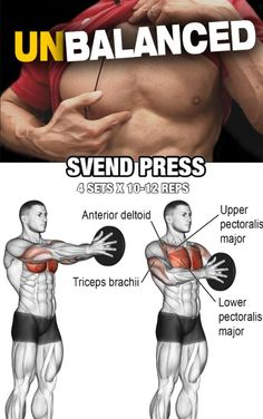 women chest workout at home ; women chest workout before and after Fitness Workouts, Weight Training Workouts, Gym Workout Tips, At Home Workouts, Fitness Tips, Fitness Plan, Cycling Workout, Back Workouts For Men, Fitness For Men