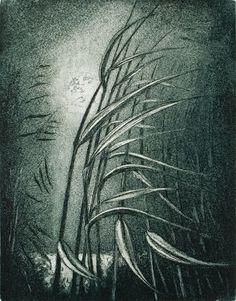 Kaislikko - The Rushes. Birches, Seas, Finland, Printmaking, Scandinavian, Abstract, Artwork, Prints, Summary