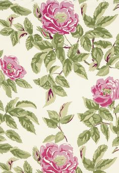 Manor Rose in Pink Lady   125th Anniversary Collection   Dorothy Draper's iconic fabric design for Schumacher from the 1930s