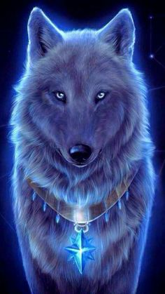 Wolf Wallpaper - My Wallpaper Tier Wallpaper, Wolf Wallpaper, Animal Wallpaper, Galaxy Wallpaper, Disney Wallpaper, Wallpaper Backgrounds, Iphone Wallpaper, Hipster Wallpaper, Wallpaper Downloads