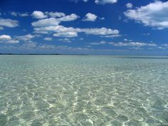 Abaco, Bahamas.  Snorkeled for sand dollars here.