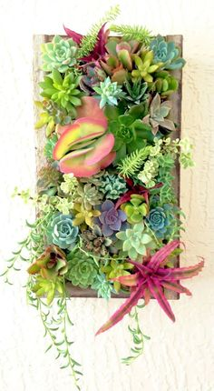 Succulent Planter Garden Vertical Planter Succulent Wall Planter 16 inch by 9 inch USD) by RootedInSucculents Succulent Wall Planter, Vertical Succulent Gardens, Vertical Wall Planters, Garden Planter Boxes, Raised Planter, Succulents Garden, Hanging Wall Planters, Planter Pots, Succulents In Containers