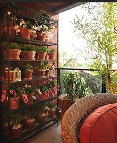 Estante vazada na varanda com plantas.