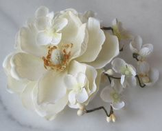 Your place to buy and sell all things handmade Floral Fascinators, Bridal Fascinator, Flower Hair Clips, Flowers In Hair, Hydrangea Not Blooming, Cream Flowers, Spring Garden, Ivory White, Rustic Style