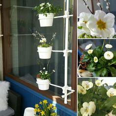Suomalainen Floreti-kukkateline ei vie tilaa parvekkeen lattialla. Ilman työkaluja, suoraan ikkunan avausreikiin laitettava kukkateline on kätevä asentaa ja käyttää. #parveke #floreti #kukkateline Planter Pots, Garden, Flowers, Garten, Lawn And Garden, Gardens, Gardening, Outdoor, Yard