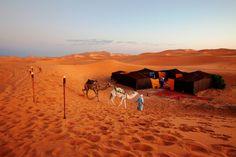 #haimas #desert #adventure #auberge #albergue #desierto #deserttents #labelleetoile #belleetoile #xaluca #grupxaluca #merzouga #erg #ergchebi #ergchebbi #morocco #marruecos #marroc #maroc #tombouctou #xalucadades #camping #africa #travel #fun #holidays #travelideas