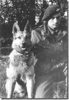 Liverpool soldier Lance Corporal Ken Bailey and paradog Monty  #Dogs