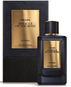 Mirages Midnight Train Prada perfume - a new fragrance for women and men 2017 Best Perfume For Men, Best Fragrance For Men, Best Fragrances, Perfume Scents, Perfume Oils, Perfume Bottles, Parfum Guerlain, Expensive Perfume, Perfume Collection
