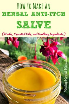 Have itchy skin? Here is a natural herbal salve that is a great remedy for itchy skin caused by dryness, rashes, bug bites, and more. It's an all purpose soothing salve for itching, inflamed skin. This recipe for herbal skin salve is easy to make and meant to soothe irritated and itchy, scaly skin. Click through for complete directions!