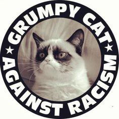 #GUMPY #CAT #AGAINST #RACISM via #ANACHIST #MEMES