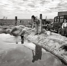 """Squatter Camp: March 1937. """"Water supply: Open settling basin from the irrigation ditch in a California squatter camp near Calipatria."""" Medium-format nitrate negative by Dorothea Lange for the Resettlement Administration."""