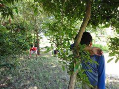 Tagu-taguan: basically the filipino version of hide-and-seek. :3