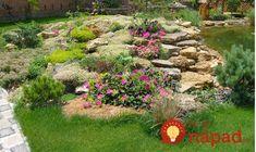 Chcete v záhrade skalku? 35 prekrásnych nápadov, ktoré určite oceníte! Garden Ideas Large, Rock Garden Design, Moss Garden, Container Gardening, Garden Landscaping, Stepping Stones, Home And Garden, Landscape, Outdoor Decor
