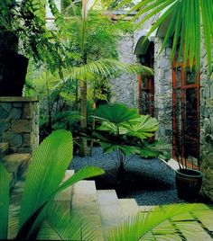 Enchanting Small Gardens Landscape Design Ideas 18 In order to have an excellent Modern Garden Decoration, it's useful to be … Small Garden Landscape Design, Tropical Garden Design, Landscape Design Plans, Tropical Landscaping, Tropical Plants, Backyard Landscaping, Landscaping Ideas, Tropical Gardens, Exotic Plants