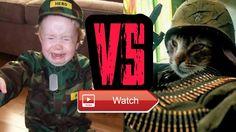 😸 Most see Funny Cats and Babies Quarrels Compilation 😼 Funny Cats and Babies Quarrels Funny Cats and Babies Quarrels Funny Cats and Babies…
