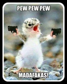 Madafackas