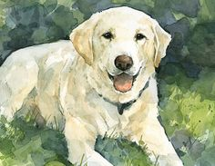Custom Pet Portrait 8x10 Dog Watercolor Painting