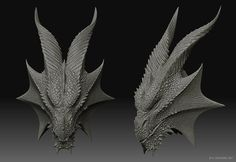 dragon front view | ... of dragons helped to inform certain aspects of the dragon's features