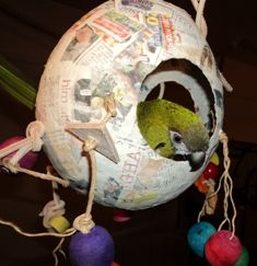 Paper Mache Jolly Ball-- Some newspapers use soy-based ink, which would be non-toxic. Could also be made with any paper free of dyes. Diy Parrot Toys, Diy Bird Toys, Bird Houses Diy, Homemade Bird Toys, Parakeet Toys, Rat Toys, Budgies, Cockatiel, Parrots