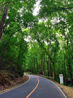 Bilar man-made forest, Bohol, Philippines Places To See, Places Ive Been, Chocolate Hills, Bohol Philippines, Moon Art, Amazing Destinations, Goal, Country Roads, Trees