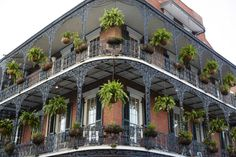 City Guide: New Orleans | A Cup of Jo